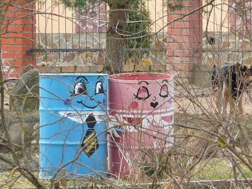 Поселившись в саду эти бочки украсят